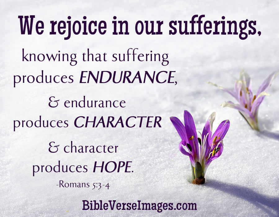 rejoice_suffering