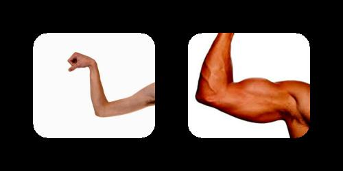 weak_strong_muscle